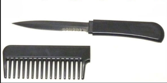 If You Ever See Someone With One Of These Combs, Back Away