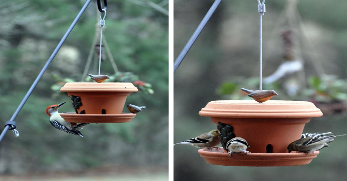 This Flower Pot Bird Feeder Is Just What Your Backyard