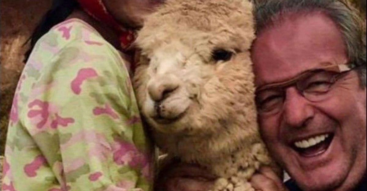 Dad Visiting Peru Can't Get Enough Of The Adorable Alpacas
